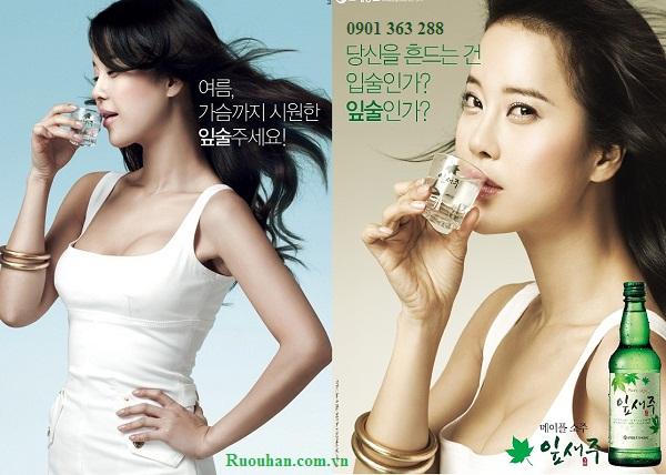 Rượu soju - yipsejoo - 잎새주 - Rượu Hàn Quốc